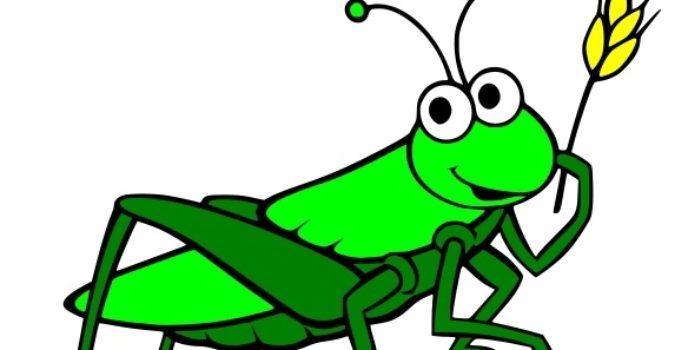 kreslená kobylka